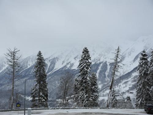 Centrum biatlonu a běžeckého lyžování Laura leží na malebných svazích pohoří Psechako napojeného na Velký Kavkaz