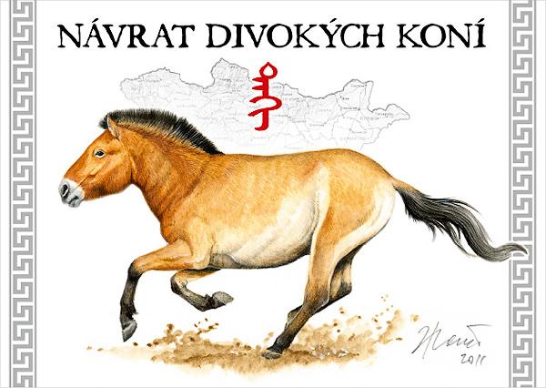 Návrat divokých koní