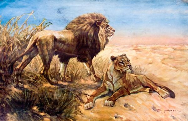 Lva se lvicí namaloval malíř František Xaver Procházka už roku 1923.