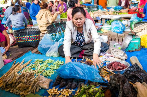 Trhovkyně v Thakheku zakrývá laoše, které má na prodej. Foto: Miroslav Bobek