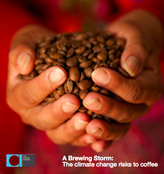 http://fairtrade.com.au/~/media/fairtrade%20australasia/files/resources%20for%20pages%20-%20reports%20standards%20and%20policies/tci_a_brewing_storm_final_24082016_web.pdf
