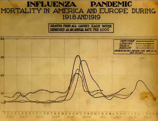 Vývoj Španělské chřipky v letech 1918-1919