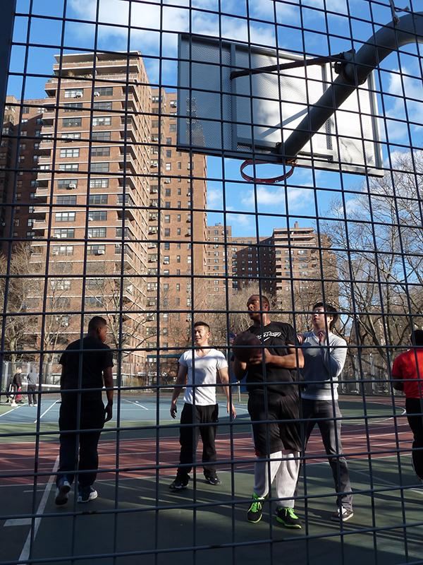 Sídliště Lafayette, Brooklyn