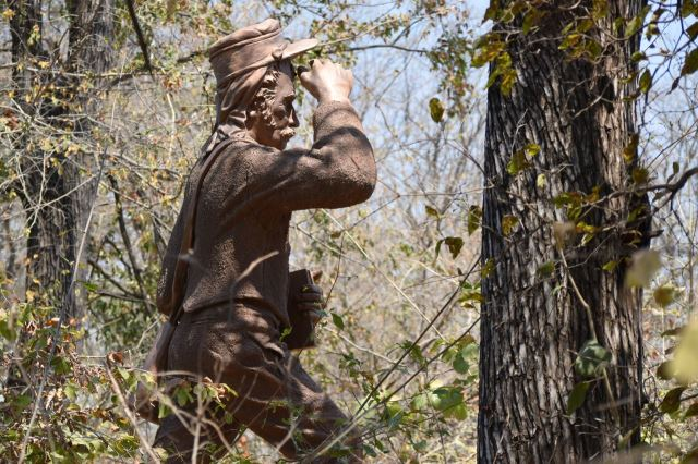 [Victoria Falls]Socha Livingstona zarostlá v lese