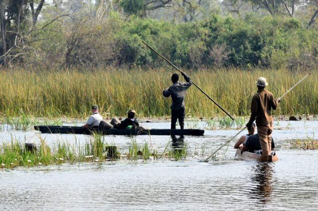 [Okavango Delta]Čluny mokoro