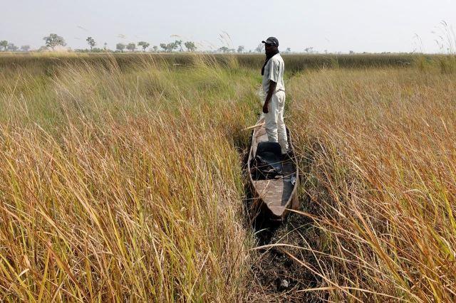 [Okavango Delta]Jay a jeho mokoro