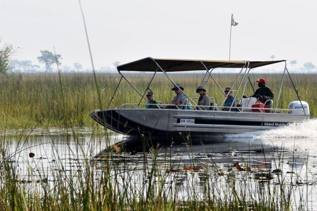 [Okavango Delta]Ti nerozumní chvátají na motorových člunech