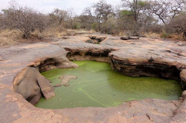 [Matsieng Footprints]Voda v roklích nikdy nevysychá