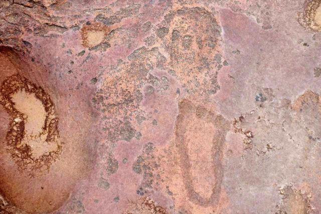[Matsieng Footprints]Detail otisku nohy a hlavy zvířete