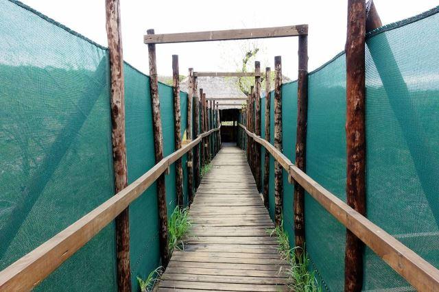 [Hluhluwe-Imfolozi Park]Přístup k úkrytu pro pozorování zvířat