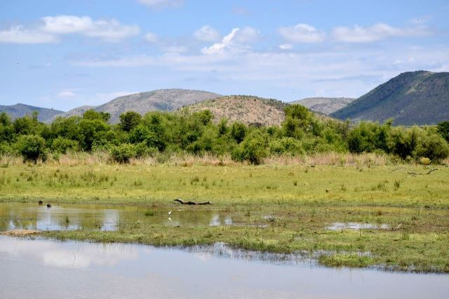 [Pilanesberg] Kopcovitá krajina